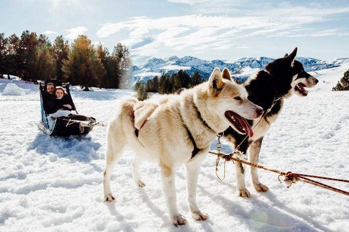 mariage hiver dans la neige chiens de traineaux Beille (Ariège)