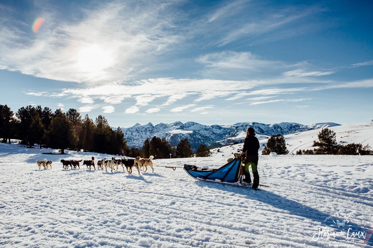 mariage neige chiens de traîneaux dans les pyrénées ariégeoises